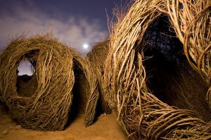 Patrick Dougherty (1945), Childhood dreams, 2007 {JPEG}