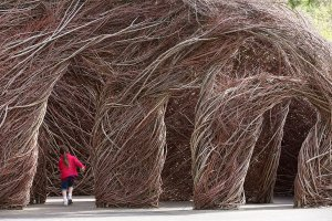 Patrick Dougherty (1945), Ready or Not, 2013 {JPEG}