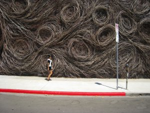 Patrick Dougherty (1945), Max Azria Shop, Los Angeles, 2007 {JPEG}